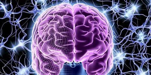 Исцеляющий ген и пластичность мозга в реабилитации после инсульта