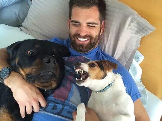 Собачья ревность и любовь